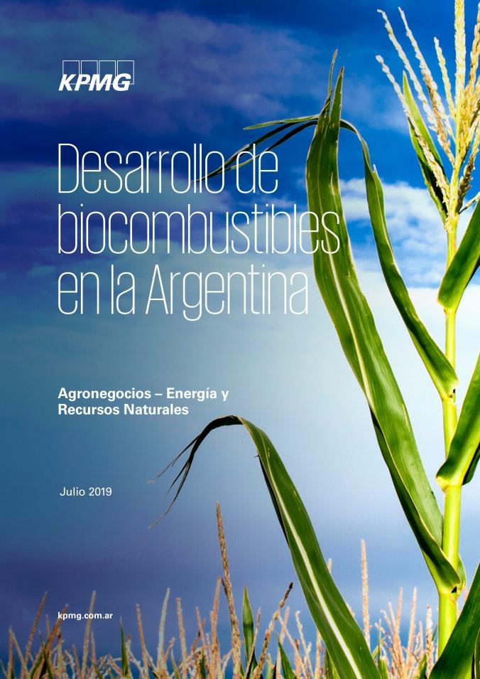 Paper Desarrollo de Biocombustibles en Argentina 2019